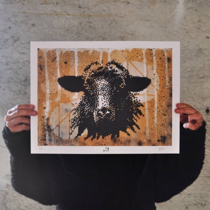Black sheep – Fineart print